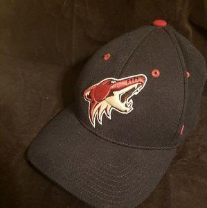 NHL Arizona Coyotes hat.